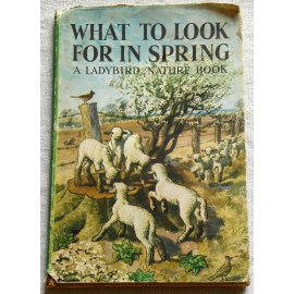 What to look for in spring - Wills & Hepworth Ltd., 1961
